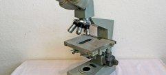 Mikroskop-Web A-32365